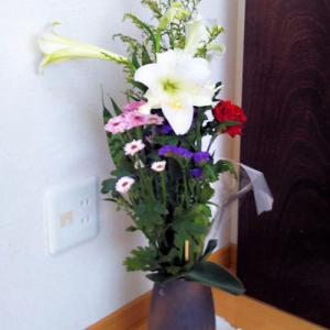やっと☀が?!~でも気温上昇の北海道(^^;・・・7月は百合の季節?!母の好きだった✿花です!