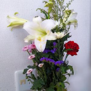 やっと、[0記録」の北海道?!~でも東京では124人の感染者?!続~7月は母の好だった百合の季節