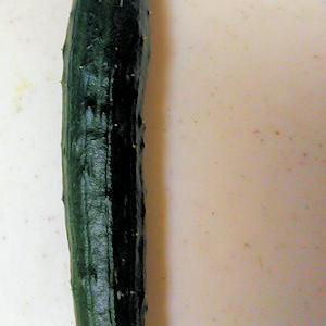 やっと開館の「ウポポイ」道新が特集♪と今シーズン初!庭の胡瓜収穫!これからも楽しみ~~♪