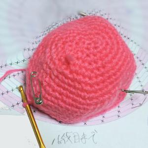 続々々々~宿題のカギ針編みのツムツムの「シャチ猫」を編む♪進んで・・・編み図の16段目まで
