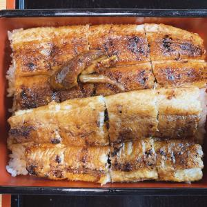 岡山市南区【魚料理の店 うおじま】を2回目訪問!コロナ対策として、銀イオン噴霧で空間除菌された安心の店内で食べる「鰻重」は格別!