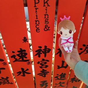 京都観光(≧▽≦)