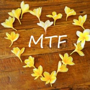 保護中: MTF分析 7/6💹