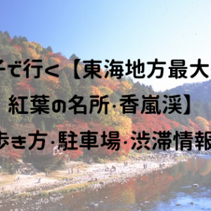 親子で行く【東海地方最大級の紅葉の名所・香嵐渓】歩き方・駐車場・渋滞情報!