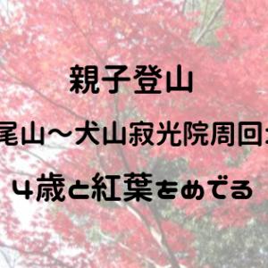 親子登山【継鹿尾山~犬山寂光院周回コース】4歳と紅葉をめでる