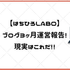 【はちひろLABO】ブログ3ヶ月運営報告!現実はこれだ!!