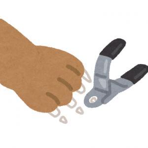 術足の爪切り