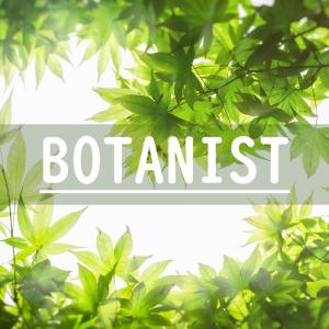 BOTANISTはメンズにもおすすめ!ボタニストの商品を長年使ってみた感想と実際のレビューを実体験をもとに比較してみた