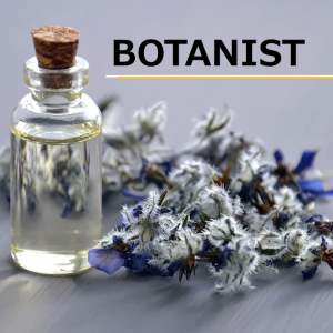 BOTANIST(ボタニスト)の化粧水の香りはかなりおすすめ!実際に使ってみた感想とネットの口コミを元に評価してみた。