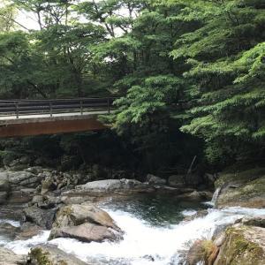 屋久島への旅【白谷雲水峡】