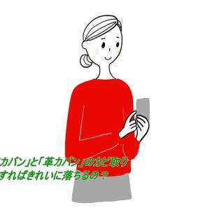 【カビ取り】布カバンと革カバンのカビはどうすればきれいになるの?