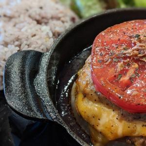 カフェダイニング529(上尾市) 一度立ち寄る価値ありの完熟トマトとチーズのWハンバーグを紹介!