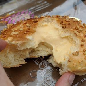 サンセリテ(狭山市)でザクトロ(クリームパン)を一度食べてみてほしい!カレーパンもおいしい!