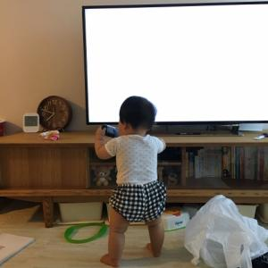 おしゃれで収納力のあるテレビ台!【コーナータイプ・ロータイプ・ハイタイプ】