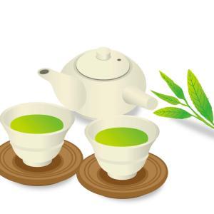 新茶の時期になりました!美味しいお茶の選び方と淹れ方!