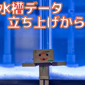 水槽データ!立ち上げ21日目~28日目!!
