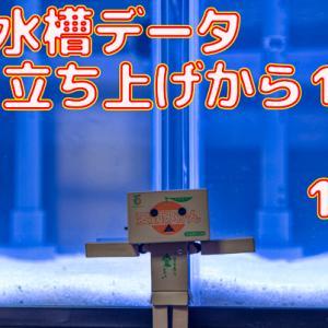 水槽データ!立ち上げ121日目~127日目!!