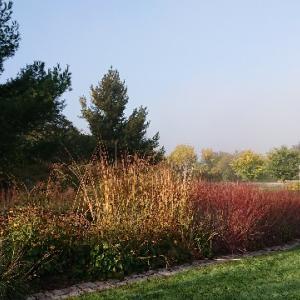 「オタワ旅行1」公園の紅葉を楽しむ