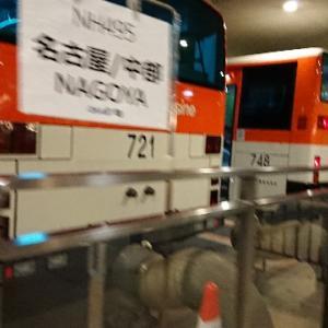 国内線でフルフラットシート?国際線機材の国内運用便に乗ってきた!「成田ー中部」