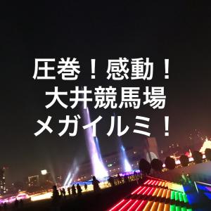 圧巻!感動!大井競馬場メガイルミ!