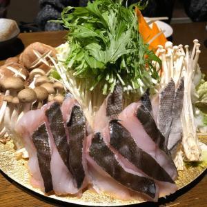 札幌すすきの忘年会の美味しい料理やお酒の写真&お店の紹介