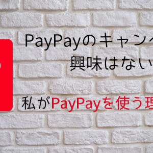 PayPayのキャンペーンに興味はない!私がPayPayを使う理由とは?