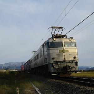 EF81-303 銀釜