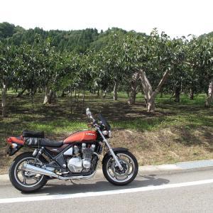 バイク で 朝日・山北地区 を散歩