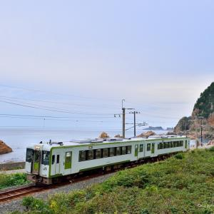 笹川流れ にて キハ110系 & 2093レ