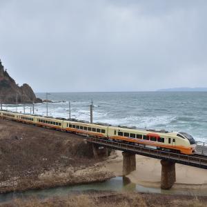 羽越本線 笹川流れ(脇川にて) E653系 U-105 フル牛 1月17日撮影