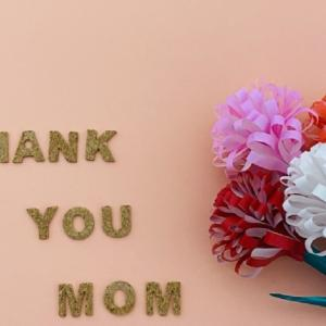 母の日の由来やカーネーションの色の意味|どんなプレゼントが喜ばれるの?