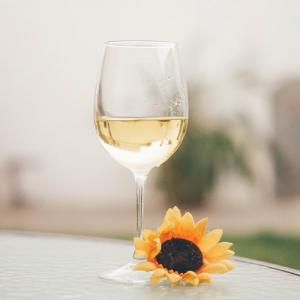 初心者向けワイン入門⑲【テイスティング❷ 白ワイン】
