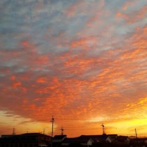 オレンジ色に染まった空
