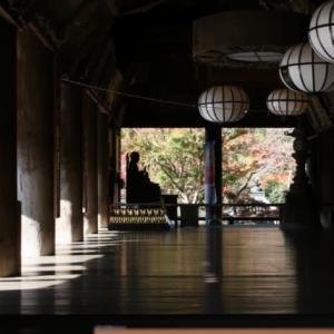 長谷寺の紅葉🍁を見に行きました🎵
