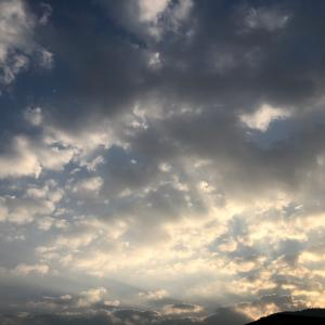 本日2019年12月12日14:13ふたご座の満月です(o^^o)