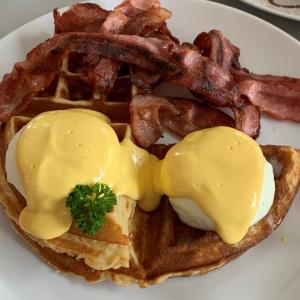 ケアンズに早朝到着!早朝の過ごし方や朝カフェ、朝食などのおススメ2019年度お散歩ルート!