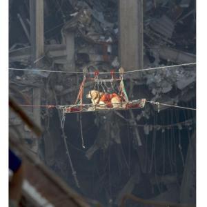 9.11 の災害救助犬たち