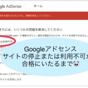 【ブログ運営】Googleアドセンスに合格した方法!はてなブログでサイトの停止または利用不可の対応方法!15回落ち続けやっとの合格!