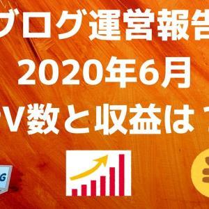 【ブログ運営報告】2020年6月のPV数と収益は?【マジで嬉しい結果に…】