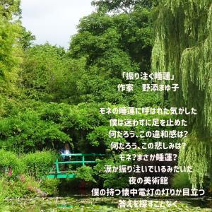 作家「野添まゆ子」さんの詩をご紹介します。