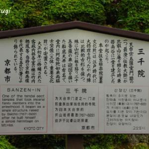 京都観光・大原三千院②