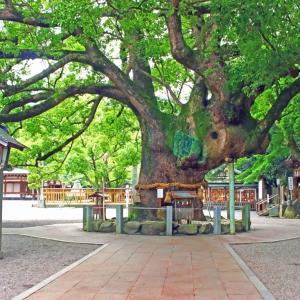 神社,寺,村 の 無料 写真
