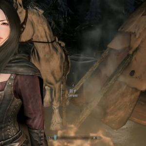 スカイリムXbox 天候・ライティング変更MODで女性NPCが美しくなる話【キャラクター美化】