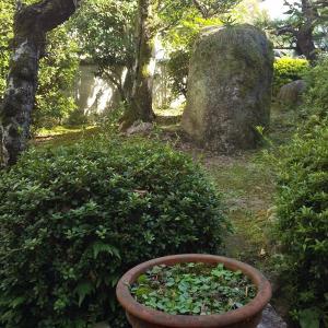 愉しい庭づくり…イメージづくり