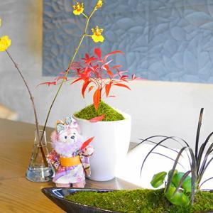 お花のある素敵空間カフェ「ラ クレマ」@名古屋南西部
