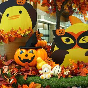 名古屋の秋、名駅見どころ撮りどころ