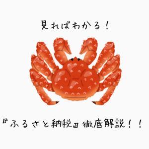 見ればわかる!『ふるさと納税』徹底解説!!