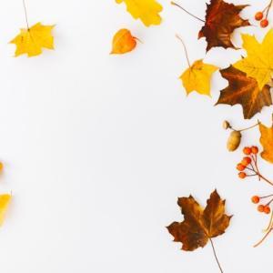 【服装】令和最初の秋、何を着る?