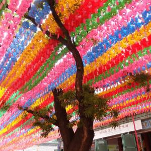 清渓川から曹渓寺を歩いて灯篭を見てきたよ(2)