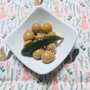 韓国家庭料理 うずらの卵の煮付け メチュリアルジャンチョリム 메추리알 장조림